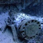 The wrecks of Gozo